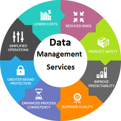 database management system services in India
